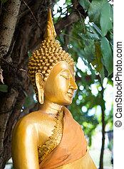 close up gold buddha statue