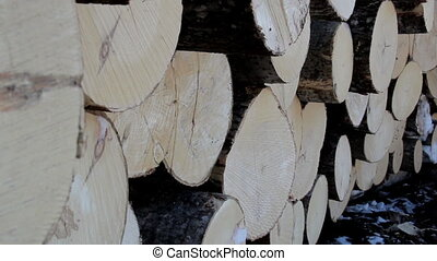 Side view image of the logs neatly piled after they have...