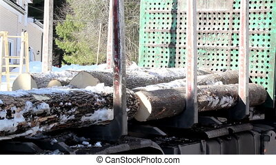 Taking out logs at the back of the truck - Taking out snow...