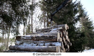 Log forwarder picking up logs in the pile and moving it to...