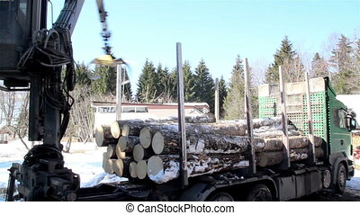 Log forwarder slowly unloading the logs from the green truck...