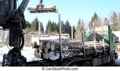 Log forwarder unloading piles of logs from the truck - A...