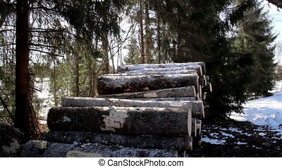 Piled logs on the ground are slowly increasing since the log...
