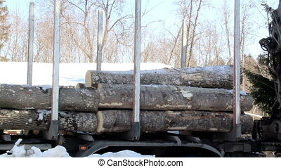 Unloading smaller logs by threes while larger logs are by...