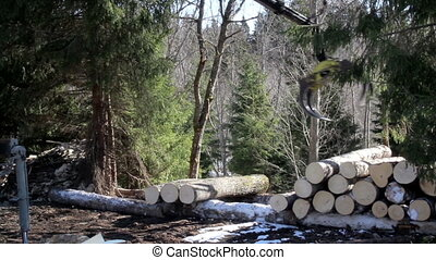 Moving logs on the ground to the piles of logs at the other...