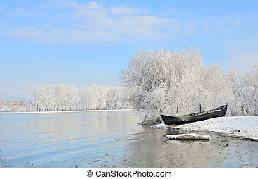 Frosty winter trees near Danube river shoot in the daytime