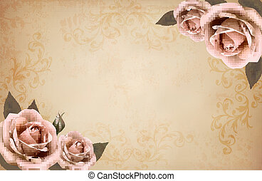 Pink roses on a vintage old paper background. Vector.