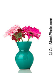 Gerbera. - Gerbera flower on the vase, isolated white...