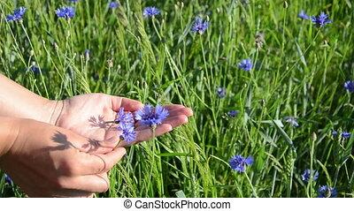 blue blossom hand