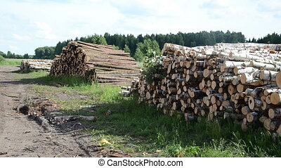 wood fuel logs stack - Panorama of wood fuel birch and pine...