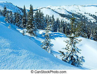 Winter mountain landscape with snowy spruce trees on...
