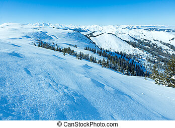 Morning winter mountain landscape with fir trees on slope...