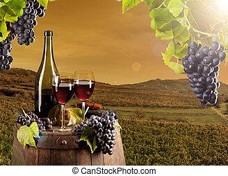 Wine in vineyard - Detail of wine with keg on vineyard