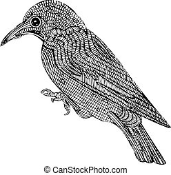Patterned Bird Illustration Vector - Isolated vector...