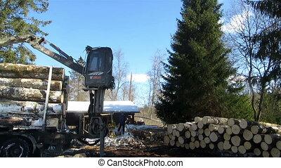 Hydraulic crane machine log forwarder unpacking logs - Log...