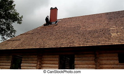 Roofers fixing the cedar wooden shingle roof A roofer is...