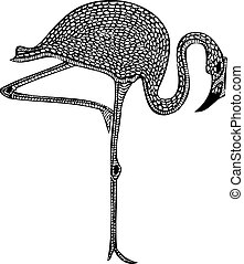 Patterned Flamingo Bird Vector - Isolated Vector...