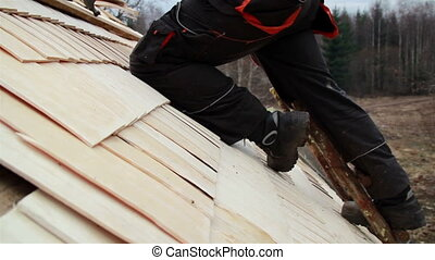 Roofer wearing work clothes cedar wooden shingle shake -...