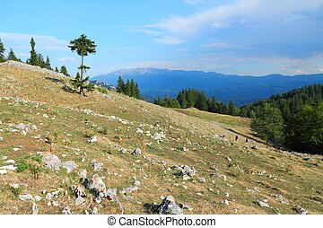 Piatra Craiului National Park in Romania - hiking trail to...