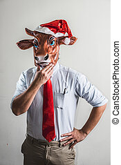 funny cow christmas businessman on white background