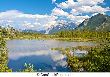 Vermillion Lakes between bushes - View on beautiful...