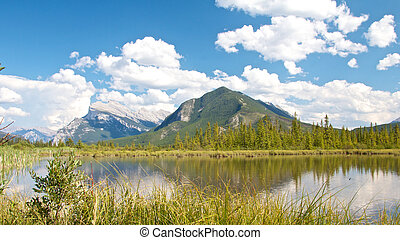 Vermillion Lakes behind grass - View on beautiful Vermillion...