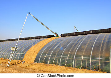 vegetable greenhouse building appearance in the winter