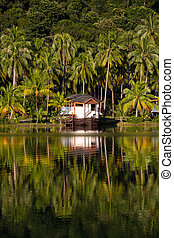 Island Koh Chang ,Thailand - Exotic place in island Koh...