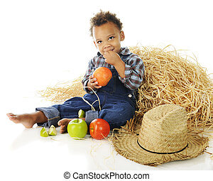 Little Apple Farmer - An adorable preschooler barefoot and...