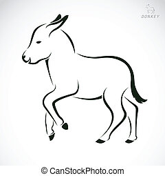 Vector image of an donkey on white background