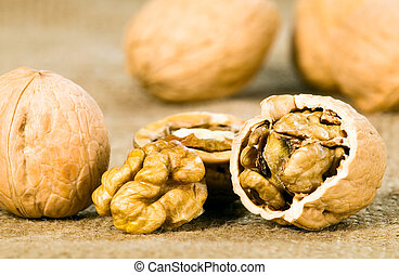 Brown greek nut on textured textile background