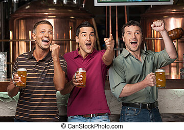 Friends cheering Three happy soccer fans drinking beer at...