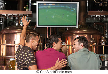 Happy soccer fans Three happy soccer fans watching a game at...