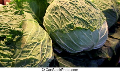 Close image of the large cabbage head
