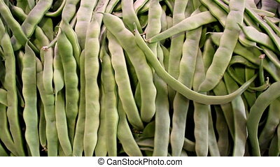 Lots of ecological green beans in pile