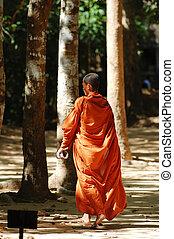 Monk - A walking monk