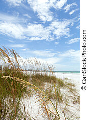 Siesta Key Florida - Siesta Key Beach is located on the gulf...