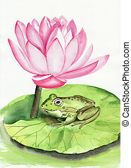 Frog and lotus - Frog sitting on a lotus leave under the...