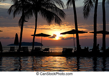 Evening in tropical hotel, silhouette of palm tree and...