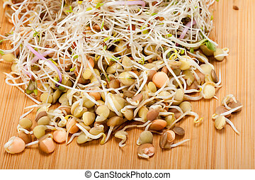The healthy diet Fresh sprouts isolated on white background...