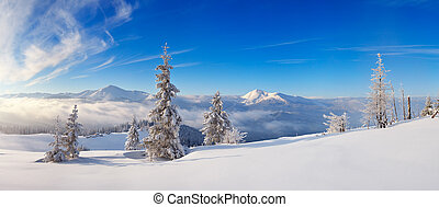 Frosty day in the mountains - Landscape panorama of a frosty...