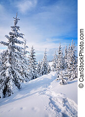 Trail in the snow - Winter landscape with a footpath on the...