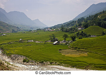 Paddy fields and villages in a valley in northern Vietnam