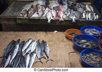 Fish at a market, Kochi, India