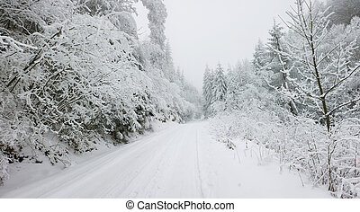Christmas background snow covered road with snowy fir trees