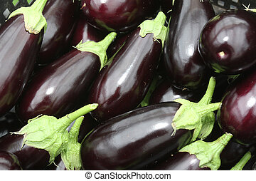 Eggplants - Group of purple eggplants with green leaves