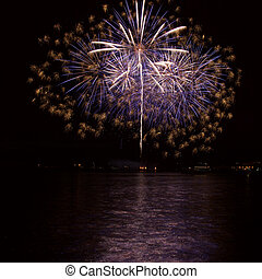Firework over the water in the night sky