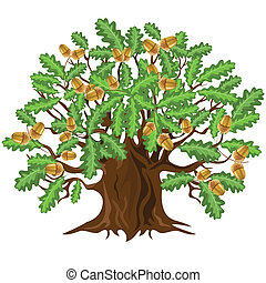 Oak tree with acorns, vector illust - Big green oak tree...