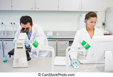 Researchers using microscope and computer in the lab - Two...