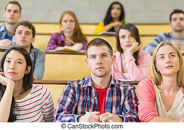 Students at the college lecture hall - Concentrating...